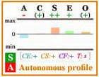 Autonomous Big Five personality profile with frame.
