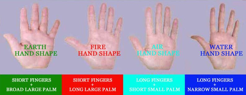 Finger length as a point of reference in the elemental hand shapes.