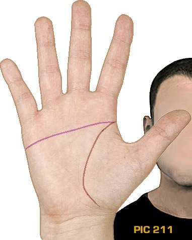 HAND LINE STUDIES: Males vs. females, Down syndrome, autism... what do hand lines reveal?