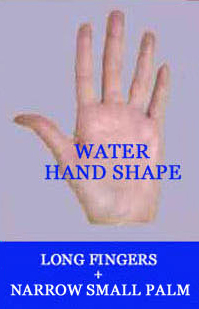 Water hand shape: longer fingers + long small palm.