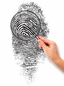 Fingerprints: 18 pattern types.