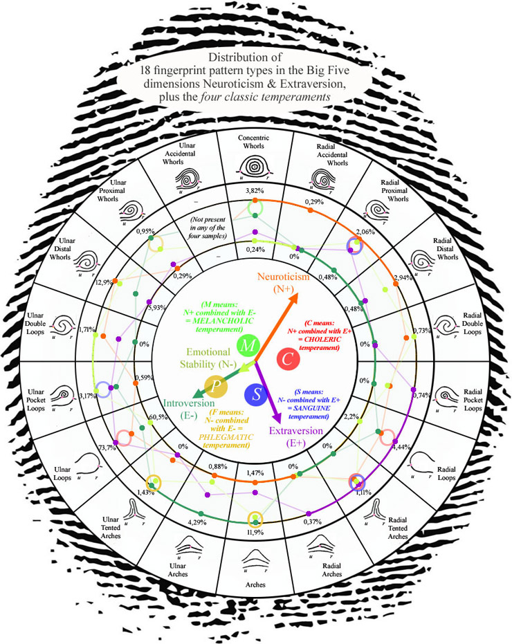 Radial loop fingerprints: what are the facts? Fingerprint-patterns-personality-temperaments