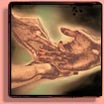 Opportunities for a FREE Palmistry & Palm Reading!!!