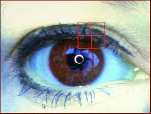 FBI wants iris scan