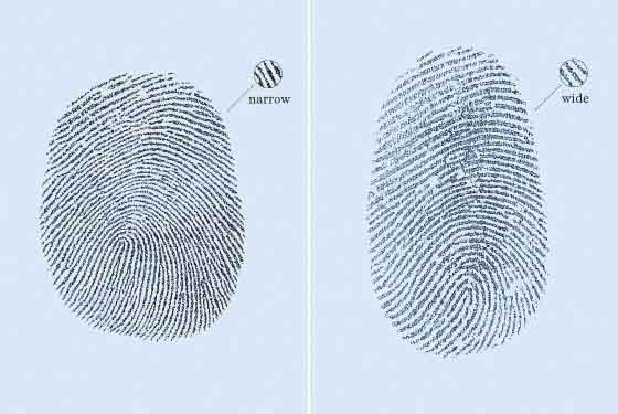 The science of gaydar: fingerprint