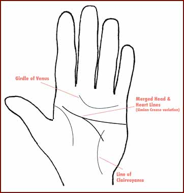 Hillary Clinton hand diagram