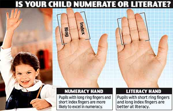 Finger morphology & palm reading: index finger vs. ring finger.