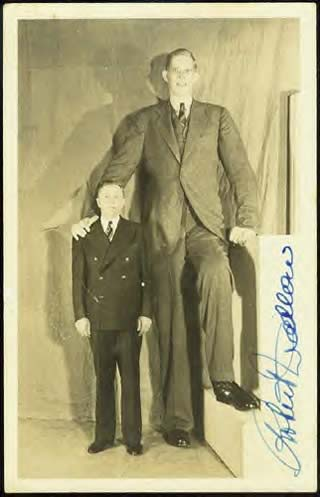Robert Wadlow was the world's largest man ever, his hand was 32.4 centimeters long.