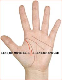 Line of mother & line of spouse