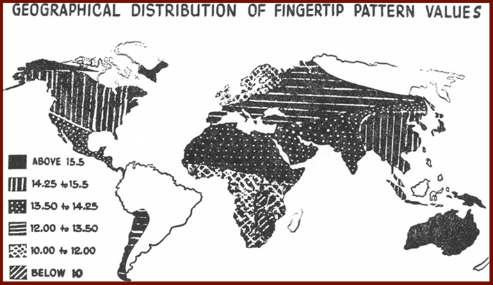 The fingerprints world map: whorls, loops & arches.