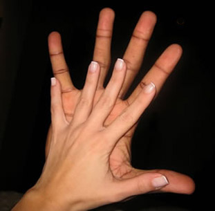 PALMISTRY & PALM READING