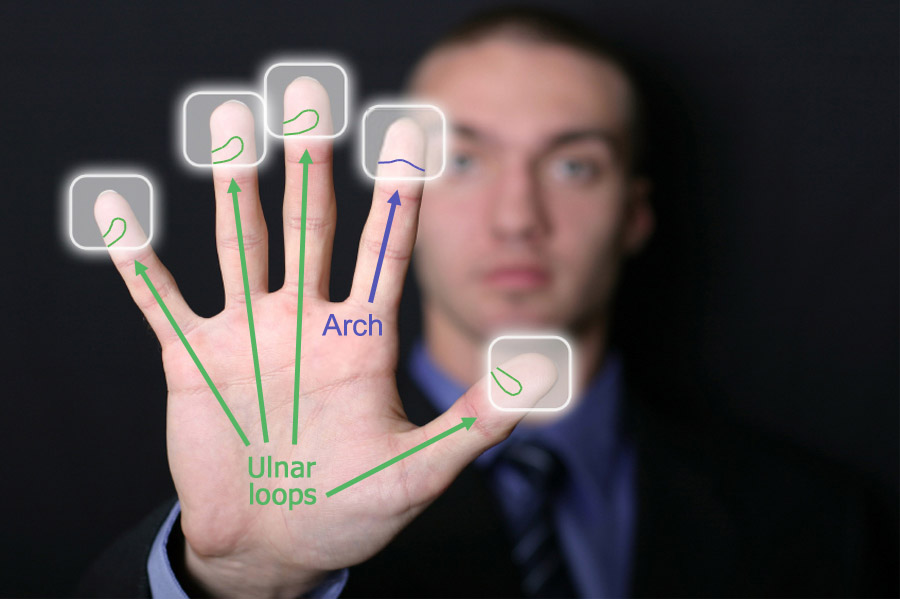 Arch fingerprints: how to recognize an arch fingerprint?