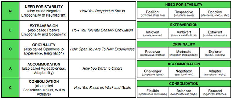 big 5 dimensions of personality by Do entrepreneurs differ from others in terms of their basic personality a recent analysis of 23 different studies of entrepreneurs attempted to answer this question (zhao, h & seibert, se 2006 the big five personality dimensions and entrepreneurial status: a meta-analytical review.