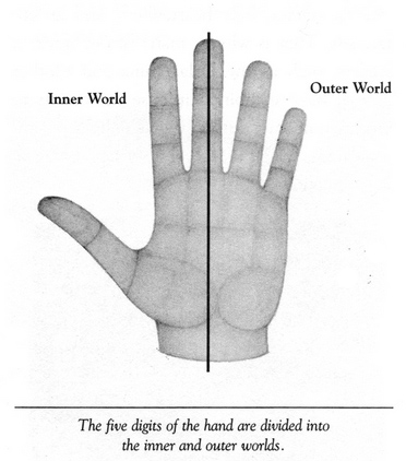 Thumb & radial fingers correlate with introvert and/or internalizing behavior!