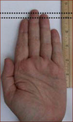 Digit ratio measurement
