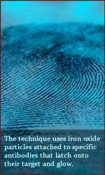 Fingerprints reveal identity, drugs & lifestyle!
