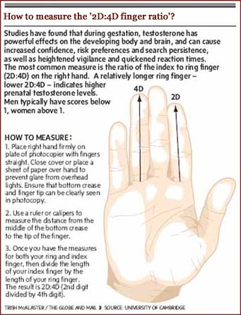 finger length meaning female