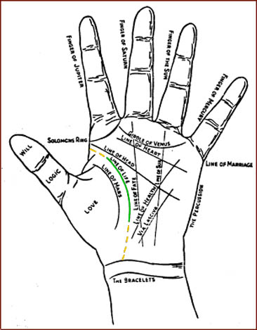 Palmistry: the hand lines &amp; the life line.