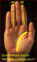 Is measuring the 2D:4D finger ratio the new chiromancy?
