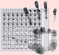 Palmprint and fingerprints