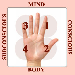 V - Can Mental Illness be Diagnosed from the Palm?I Pdc-hand-system