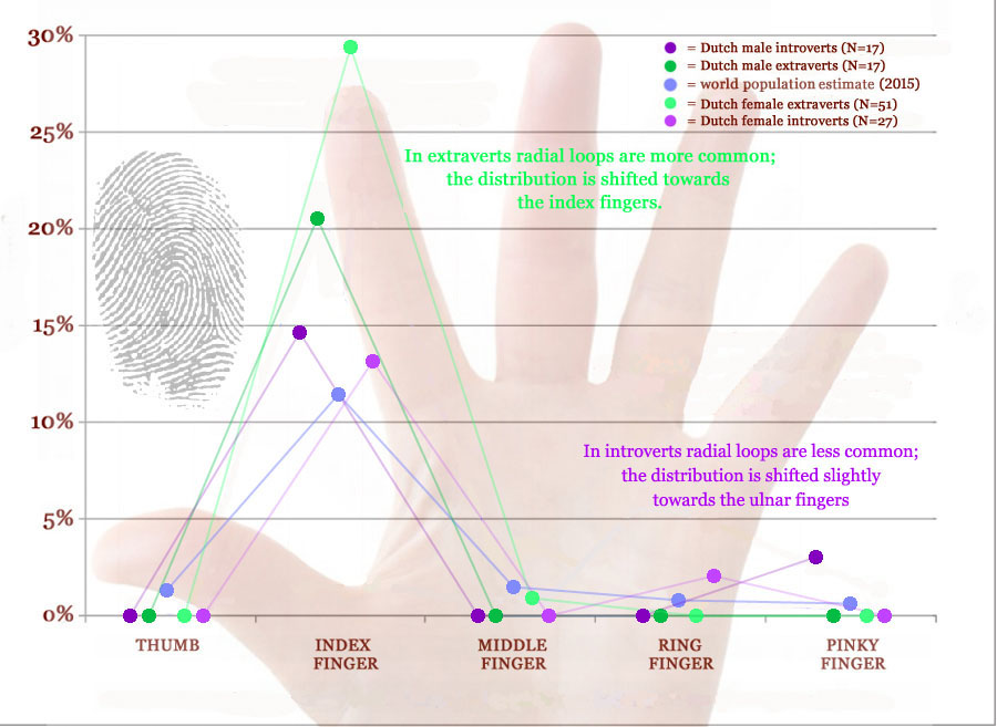 Radial loop fingerprints: distribution in extraverts & introverts.