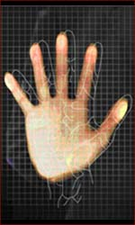 Vein pattern palm reading