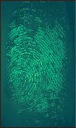 What fingerprints reveal: identiy, drugs & lifestyle