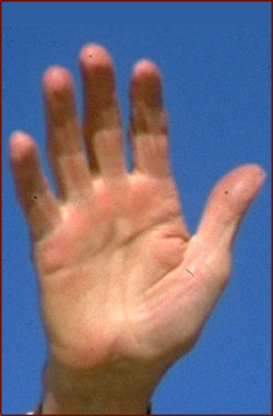 The right hand of Ronald Reagan.