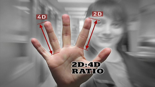 Scouting athletic ability: athletes have a lower 2D:4D digit ratio!