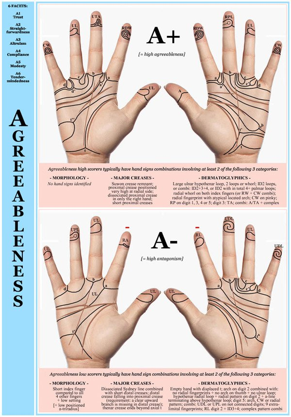 Hand chart for the Big Five dimension Agreeableness - 6 facets: A1 Trust, A2 Straightforwardness, A3 Altruäsm, A4 Compliance, A5 Modesty, A6 Tendermindedness.