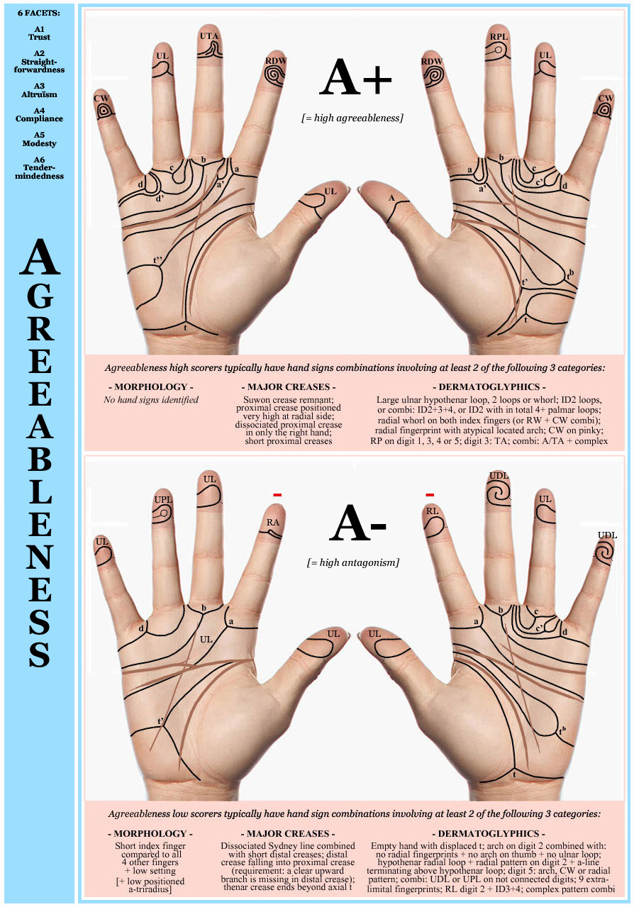 Phantom pictures describing hand constellations for agreeable personalities (A+) versus antagonistic personalities (A-).