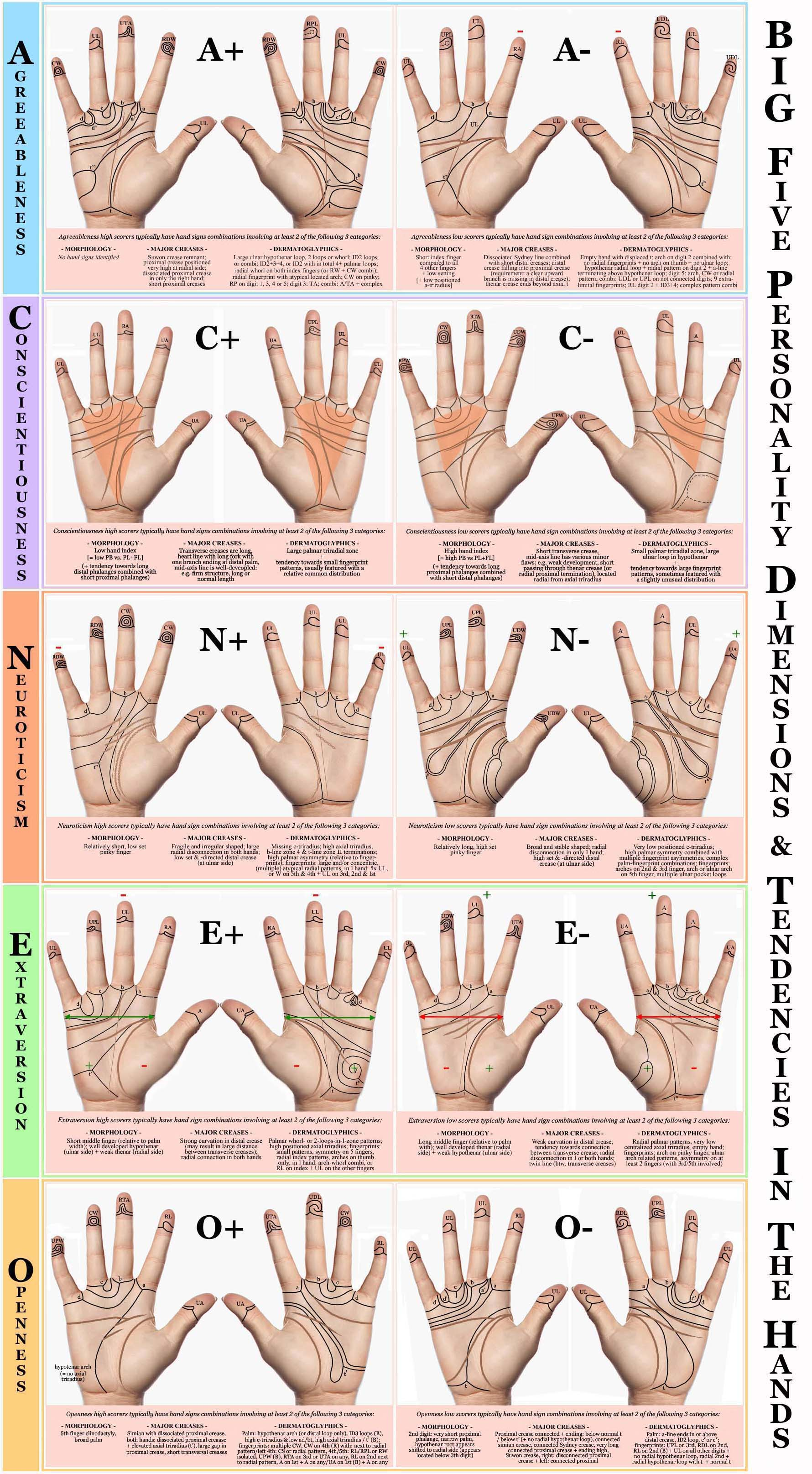 Hand charts: hand sign tendencies in the Big Five personality dimensions - Conscientiousness, Agreeableness, Extraversion, Openness & Neuroticism!