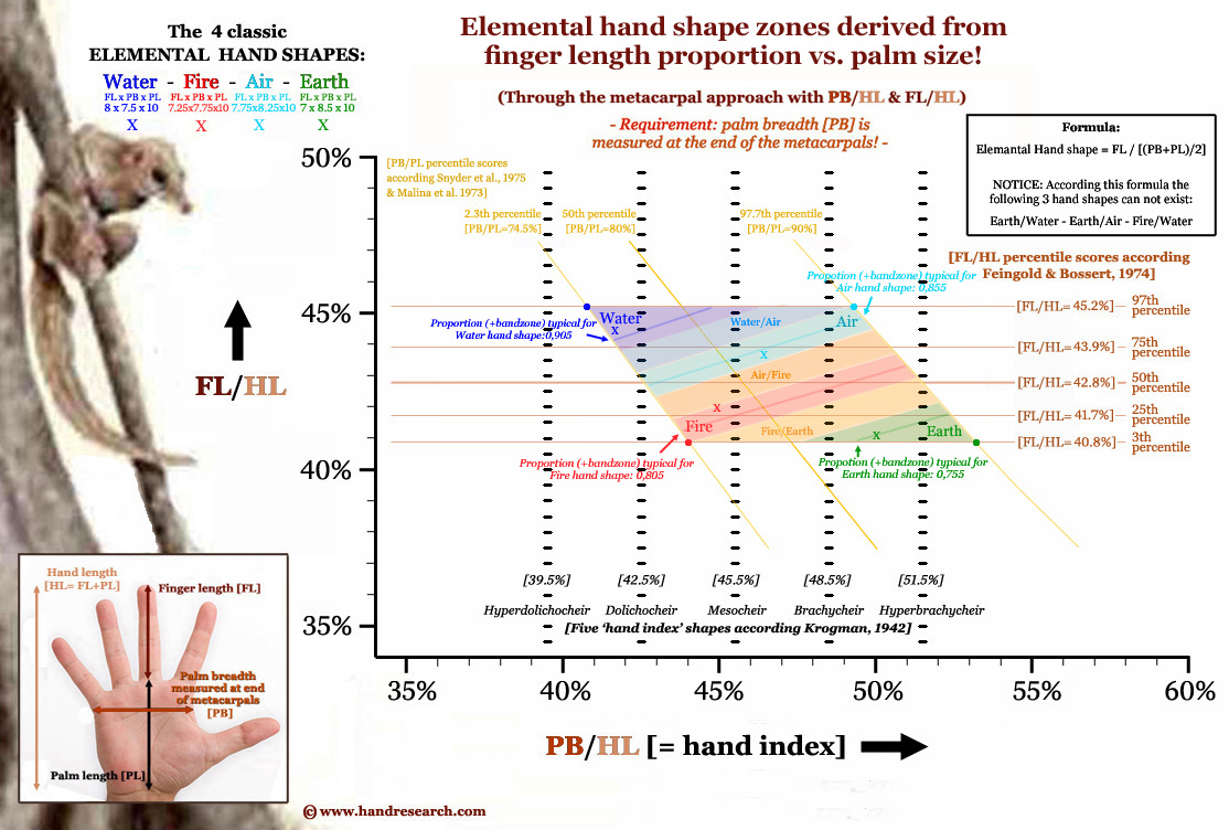 Elemental hand shape assessment 2.0: finger length vs. palm size! Elemental-hand-shape-finger-length-vs-palm-size