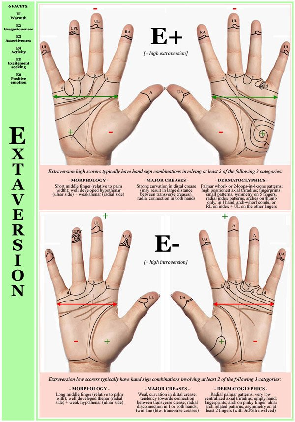 Hand chart for the Big Five dimension Extraversion - 6 facets: E1 Warmth, E2 Gregariousness, E3 Assertiveness, E4 Activity, E5 Excitement seeking, E6 Positive.