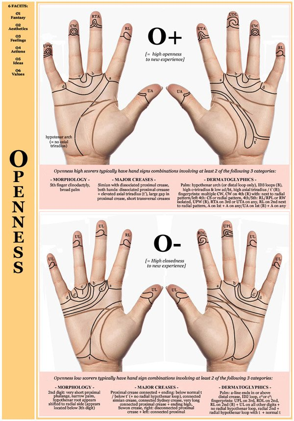 Hand chart for the Big Five dimension Openness - 6 facets: O1 Fantasy, O2 Aesthetics, O3 Feelings, O4 Actions, O5 Ideas, O6 Values.