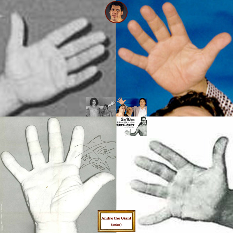 The hands of French actor Andre the Giant: photo impressions.