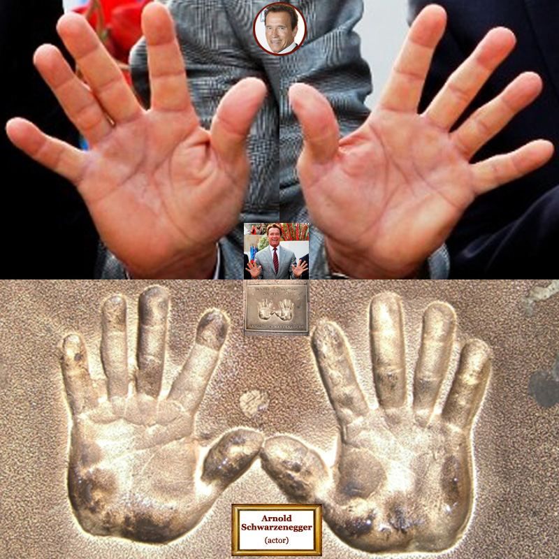 The hands of Austrian actor Arnold Schwarzenegger: photo impressions + hand prints.