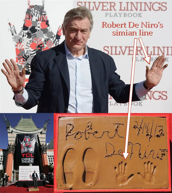 Robert De Niro has a simian line in his left hand.