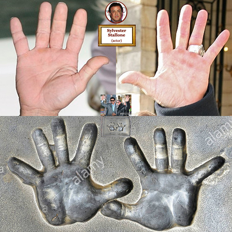 The hands of US actor Sylvester Stallone: photo impressions + hand prints.